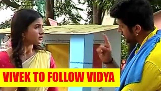 Vidya: Vivek to follow Vidya
