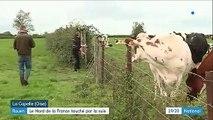 Rouen : le nord de la France touché par la suie