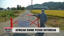 Suspected case of African swine fever at pig farm in Hwaseong has tested negative