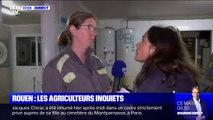 Cette agricultrice s'inquiète pour ses productions consignées après l'incendie de l'usine Lubrizol à Rouen