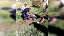 Bataklığa saplanan sahipsiz atı itfaiye kurtardı
