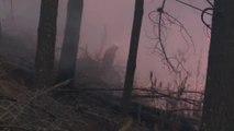 Un millón de hectáreas calcinadas por los incendios en Bolivia