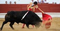 Le gouvernement veut interdire la corrida aux mineurs de moins de 16 ans