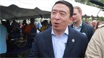 Yang Raises $10-Million In Third Quarter