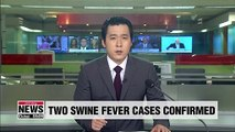 S. Korea confirms two new cases of African swine fever in Paju and Gimpo