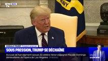 """Sous la menace d'une procédure de destitution, Trump accuse Joe Biden et son fils d'être """"corrompus"""""""