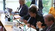 Commission des affaires étrangères : M. Jean-Yves Le Drian, ministre de l'Europe et des affaires étrangères  - Mercredi 2 octobre 2019