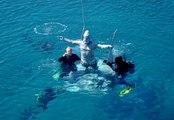 Çeşme'de Hacı Bektaş Veli ve Pir Sultan Abdal heykelleri denize batırıldı