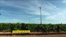Éoliennes : une électricité qui devient compétitive