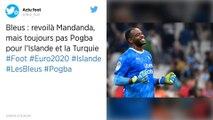 Equipe de France : Steve Mandanda rappelé par Didier Deschamps
