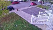 Une femme lance une poubelle sur le pare-brise d'une voiture... sans raison !