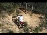 vtt free ride team gravity 9.81 sponso INDEM Clothing