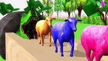Los animales de granja y sus crías se transforman en animales salvajes y sus crías parte 30