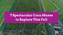7 Spectacular Corn Mazes to Explore This Fall