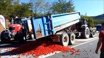 Les agriculteurs de Vaucluse écrasent des tomates sur la nationale 7