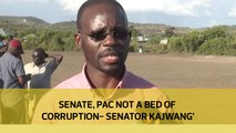 Senate, PAC not a bed of corruption - Senator Kajwang'