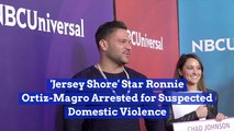 Ronnie Ortiz-Magro Of The 'Jersey Shore' Arrested
