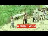 A Bitter Wind