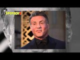 Sylvester Stallone to debut on TV | Hollywood High