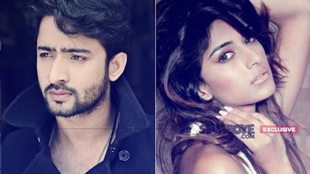 Shaheer Sheikh Targets Journalist For Leaking His Hot Scene With GF Erica Fernandes   SpotboyE