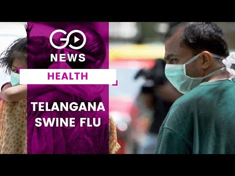 Telangana Swine Flu Alert
