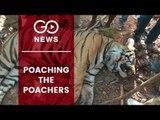 Uttarakhand Crackdown On Poachers