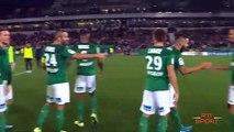 Football   Ligue 1 : Lyon dans le doute