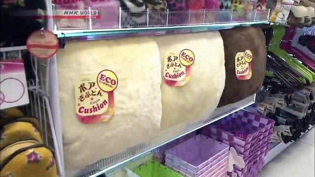 Japanology Plus - 100 Yen Shops