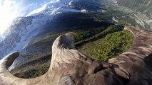 """Chamonix, aquila """"testimone"""" dei cambiamenti climatici"""