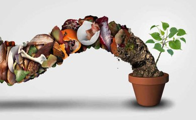 Warum und wie stellt man Kompost herstellt
