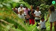 Niños plantan 10.000 árboles