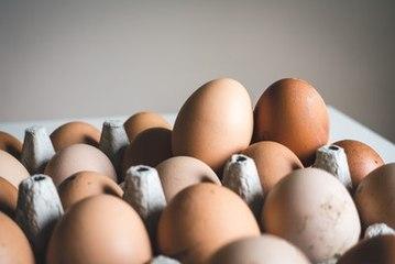 Wie weiß man, ob ein Ei frisch ist?