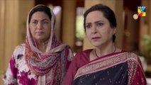 Ishq Zahe Naseeb Epi 17 HUM TV Drama 11 October 2019