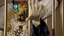 """The Masked Singer Season 2 (FOX) """"These Masked Singers Are Bringing It"""" Promo (HD)"""