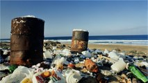 Now There's A New Type Of Litter Making Beaches Disgusting