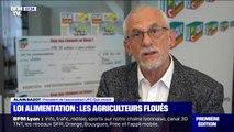 Loi alimentation: selon une nouvelle étude, les agriculteurs vendent toujours à perte