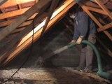 Traitement de charpente et termites Sud Gironde et Landes
