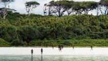North Sentinel Island : voici pourquoi cette île est la plus dangereuse au monde