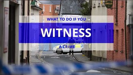 What to do if you witness a crime  giving a police statement