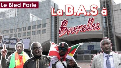 La Brigade Anti-Sardinards à Bruxelles