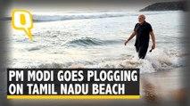 PM Modi Goes Plogging in TN Beach Ahead of Talks with Xi Jinping