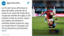 Coupe du monde de rugby. Le XV de France affrontera le Pays de Galles en quarts de finale