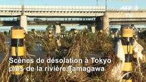 Japon: au moins 14 morts après le passage du typhon Hagibis