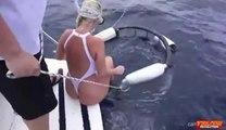Requin à la chasse 2019 Attaque de requin filmée à la grande attaque de requin blanc