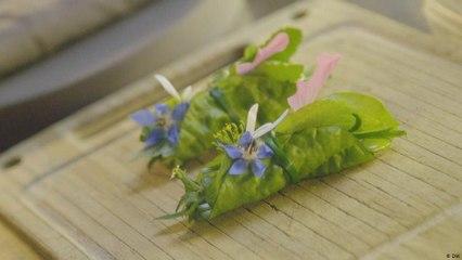 المطبخ النباتي للطاهي النجم سيفين سوانس