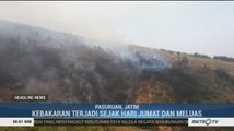 Kebakaran di Gunung Arjuno Meluas