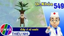 THVL | Dr. Khỏe - Tập 549: Cây ô rô nước  – Phần 2