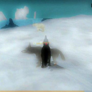 Trailer Video_Wolf Online 2 game