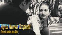 Agua Nueva Tropical - Flor de todos los días