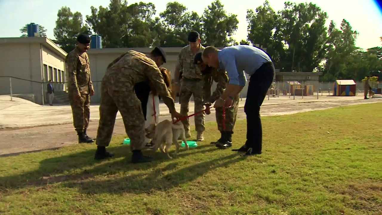 Duke and Duchess of Cambridge meet puppies in Pakistan